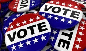 IT-iștii au descoperit sute de mii de ANOMALII în alegerile prezidențiale din SUA