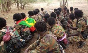 MASACRU în Etiopia: peste 600 de civili au fost UCIȘI pe 9 noiembrie