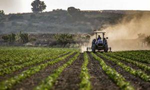 SPRIJIN pentru mai multe domenii din agricultură. Ce ajutoare de stat se acordă