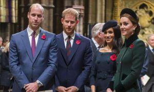 Continuă SCANDALUL la Casa Regală. Ce au discutat Harry și William
