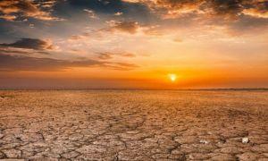 Anul 2020, printre cei mai CĂLDUROȘI ani din istoria măsurătorilor meteo