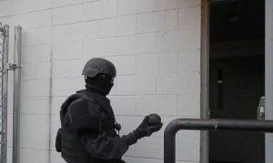 ALERTĂ inedită în Germania: Trupele speciale, puse pe jar de o ...jucărie sexuală