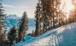 Un tânăr de 19 ani, salvat din Valea Țapului după ce a petrecut noaptea într-un adăpost pe care l-a săpat în zăpadă