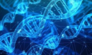 Bază de date a Interpol pentru persoanele dispărute, pe bază de ADN