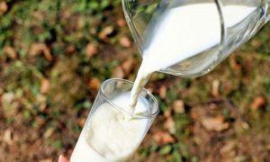 Cât de SĂNĂTOS este, de fapt, laptele de vacă