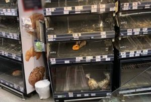ȘOBOLANI printre pâine! IMAGINI revoltătoare surprinse într-un magazin din București