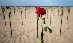 Inedit: Plaja Copacabana, acoperită în trandafiri roșii