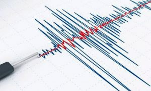 Un cutremur a avut loc, marți dimineața, în Vrancea